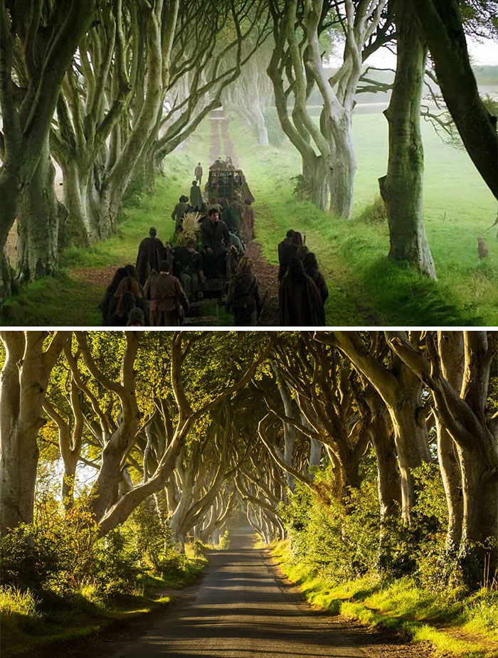 Dark Hedges, Northern Ireland - Kingsroad (Foto: Divulgação)