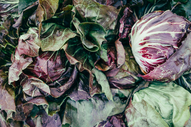 Repolho - Pode ser incluído em uma grande variedade de alimentos e é capaz de eliminar toxinas, além de prevenir doenças graves. (Foto: Pexels)