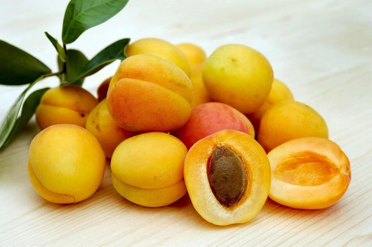 Pêssegos ou nectarinas são mais nutritivas e te deixam mais saciados (Foto: Pixabay)