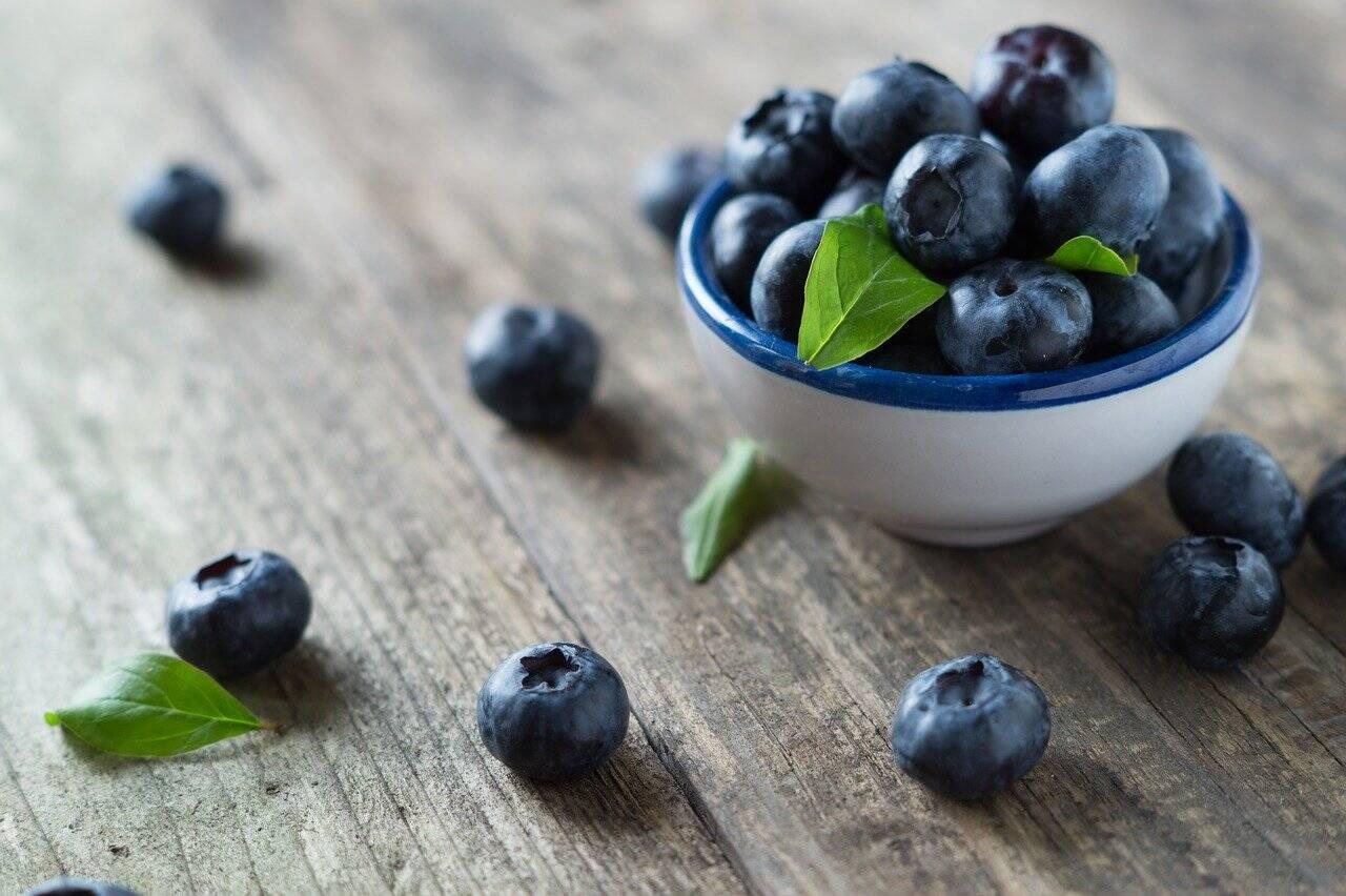 Mirtilo são ricos em antioxidantes, diminuindo a inflamação do organismo e os danos provocados pelos radicais livres (Foto: Pixabay)