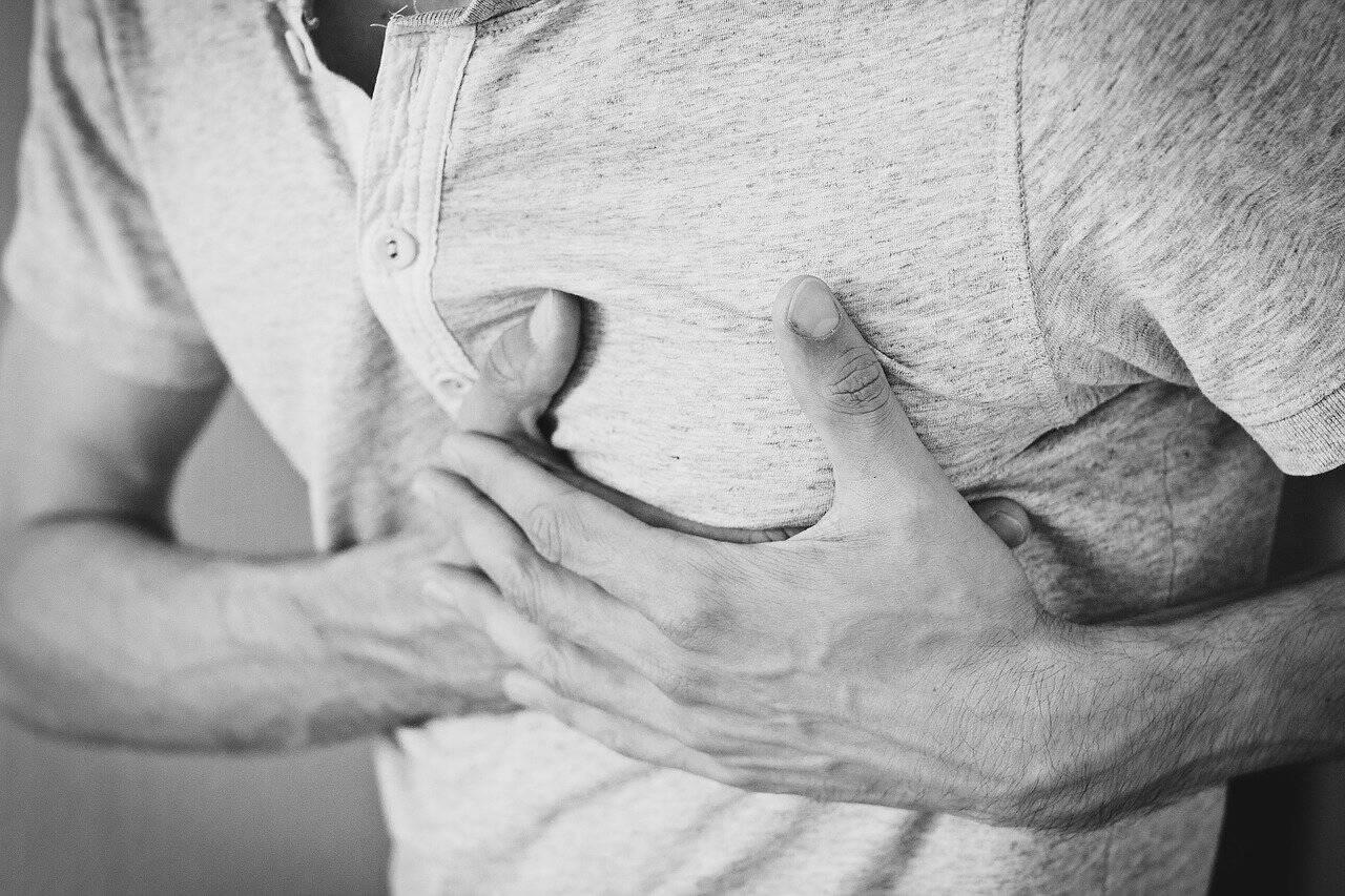 Estudos evidenciam que a ingestão dos flavonóides e saponinas presentes no pó de guaraná podem auxiliar no controle do colesterol (Foto: Pixabay)