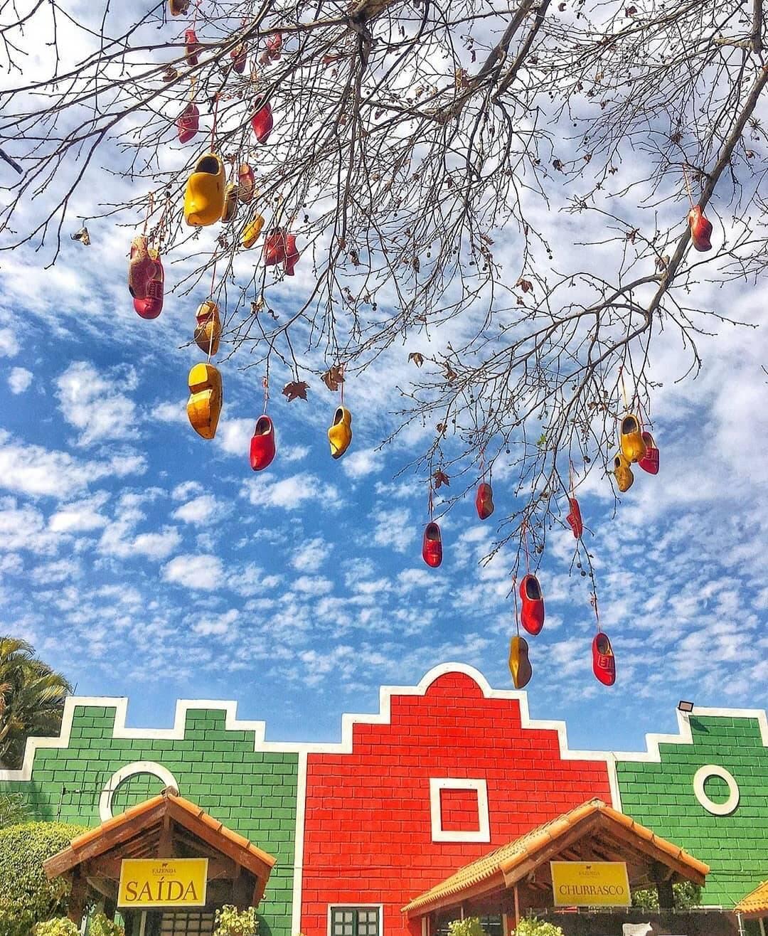 Holambra é um dos destinos mais procurados para viagens românticas. (Foto: Instagram)