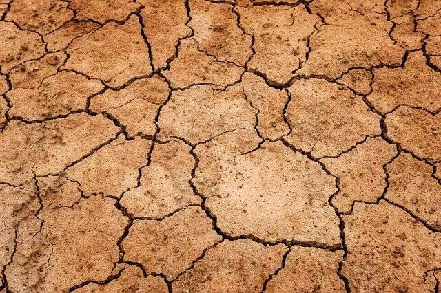Em outros locais que serão atingidas pelas secas, os cultivos de plantações poderão ficar mais difíceis (Foto: Pixabay)