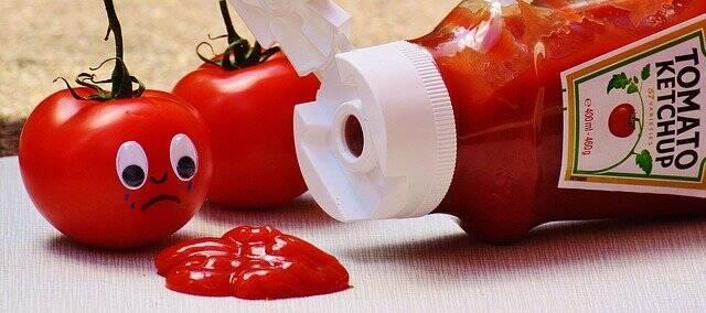 Na França os Ketchups são proibidos em escolas, para incentivar uma refeiçõ mais saudável (Foto: Pixabay)