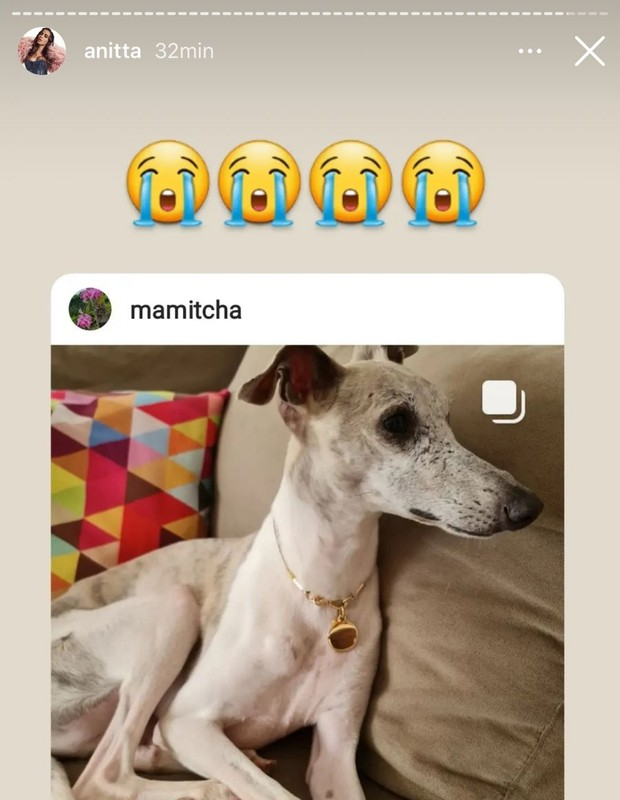 Sua mãe que informou a perda. (Foto: Instagram)