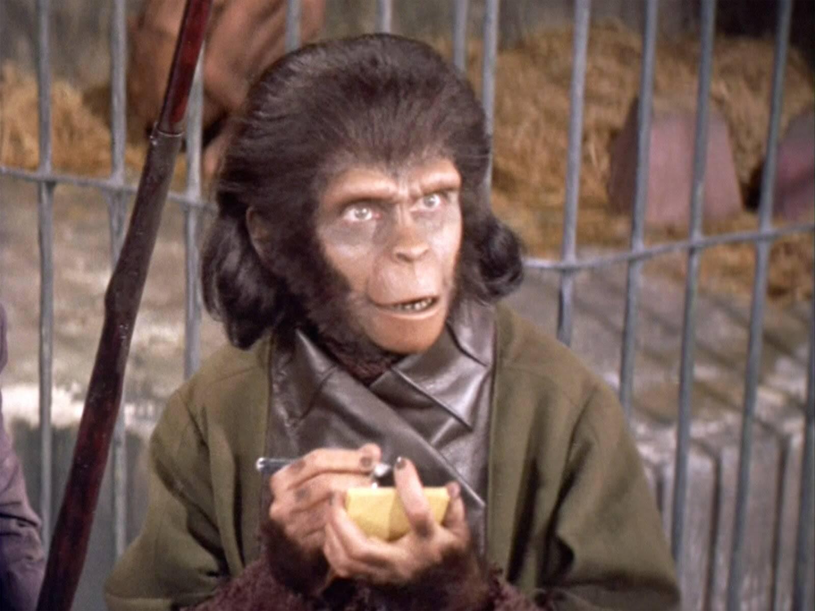 O Planeta dos Macacos (Foto: Divulgação)